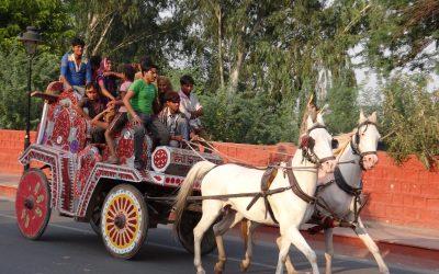 Why Delhi is Better than Burning Man